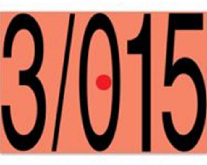 """""""3/015"""" Ζωγραφική - κατασκευές από τον Μανώλη Χάρο"""