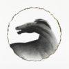 σόρογκας-σωτήρης-άλογο