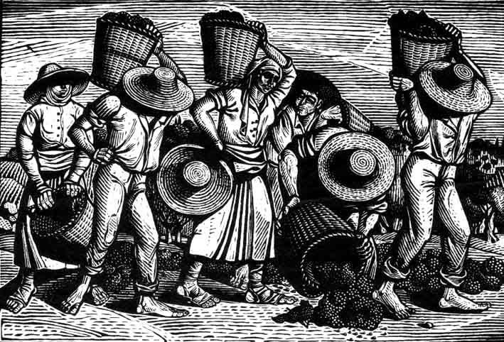 Α. Τάσσος , Αγρότες