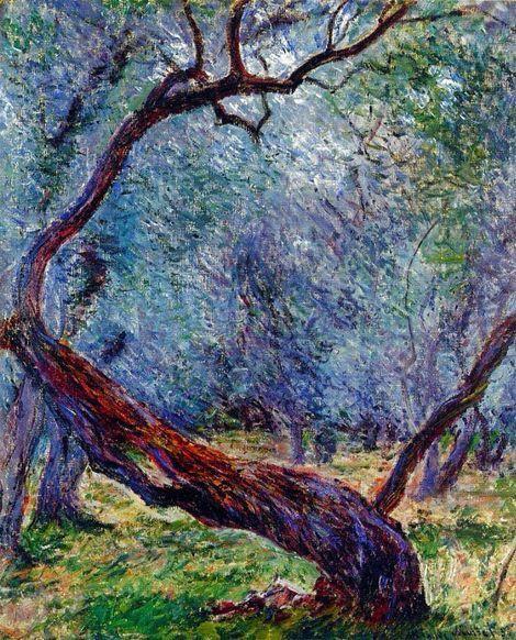 Claude Monet, Olive tree