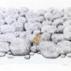 Πέτρες με Κίτρινο Λουλούδι Μεταξοτυπία του Σωτήρη Σόρογκα στον Εικαστικό Κύκλο Sianti