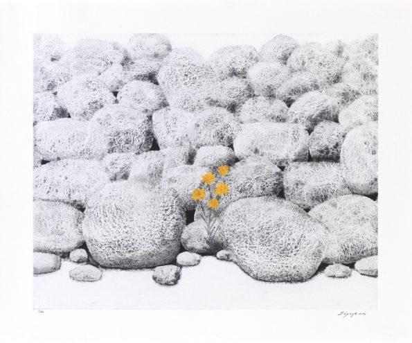 Πέτρες με Κίτρινο Λουλούδι